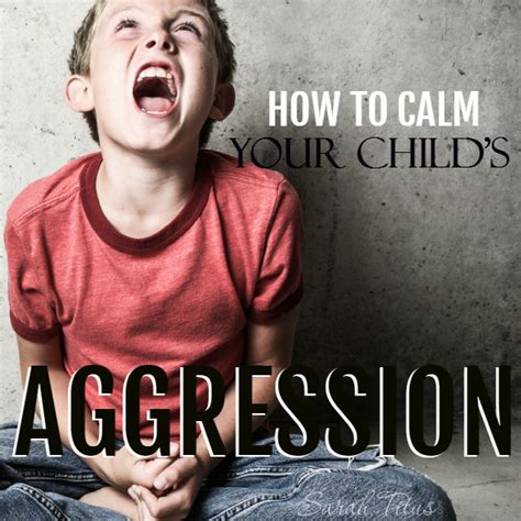 how to calm your how to calm your child s aggression titus
