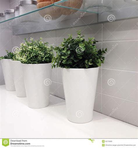 vasi in resina bianchi vasi moderni bianchi pannelli termoisolanti