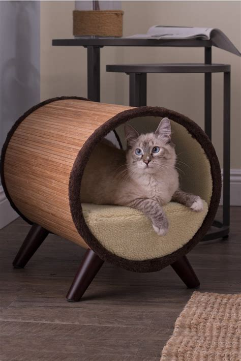 best cat beds the top 5 places to put cat beds overstock com