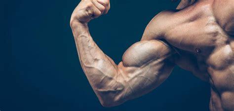 aumentare massa muscolare alimentazione come aumentare la massa muscolare