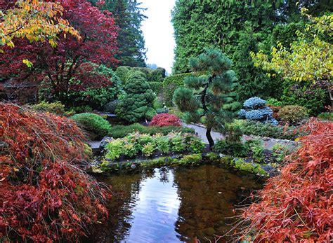 japanse tuin planten kopen hoe leg ik een japanse tuin aan mar 233 chal