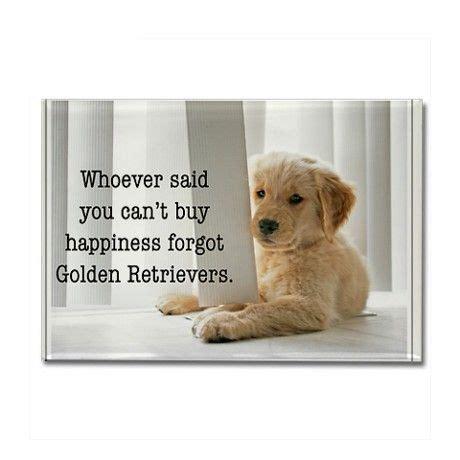 golden retriever quotes inspirational quotes golden retrievers quotesgram
