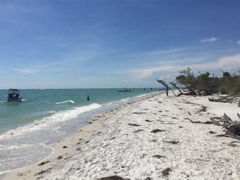 boat rental near cape coral things to do near dolphin key resort in cape coral