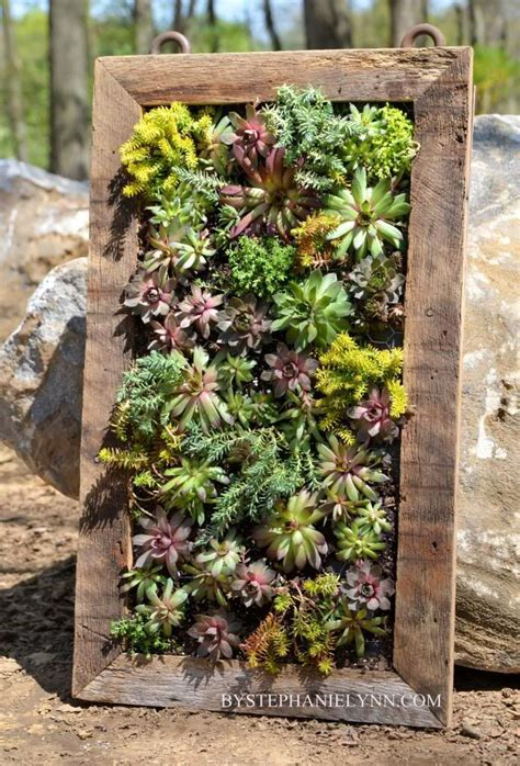 How To Make Vertical Garden Planters 25 Best Ideas About Succulent Wall On