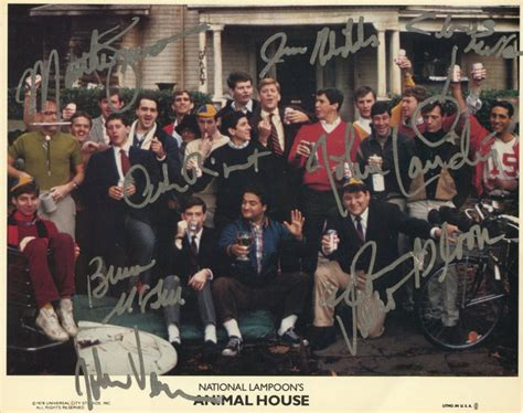 cast of animal house online sports memorabilia auction pristine auction