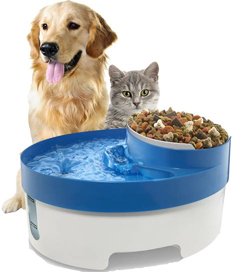 Water Dispenser For Cats pet water for cat automatic food bowl dish