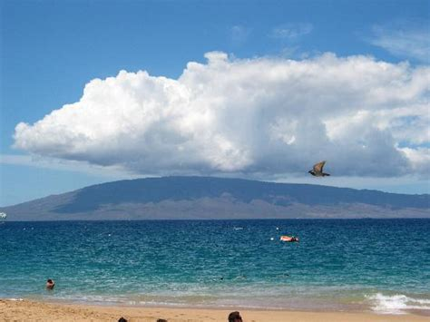 lanai pictures island of lanai from kaanapali beach sheraton picture