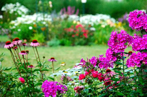 easy flower garden flower garden in a weekend the and easy