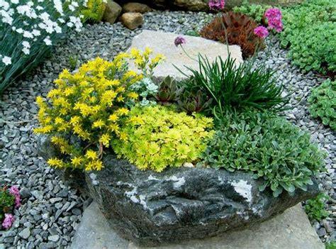 Perennial Gardening In Containers Perennial Gardening Rock Garden Perennials
