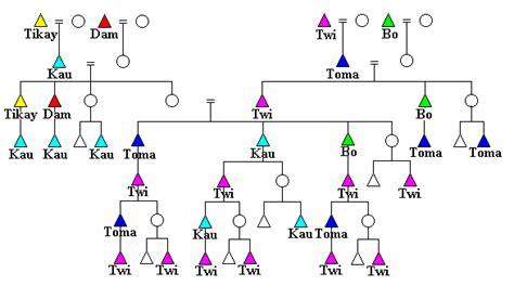 kinship pattern definition ju hoansi namesake kinship