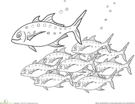 coloring page school of fish school of fish worksheet education com