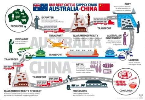 historic live export deal with china agriculture