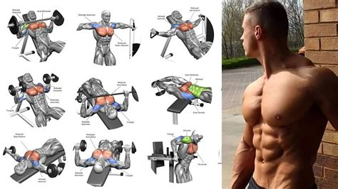workouts for chest top 4 exercises for building mass