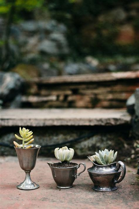 succulents in spain 17 best images about vintage potted succulents on planters lace runner and centerpieces