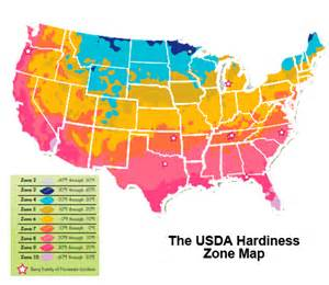 hardiness zone 10 and 11