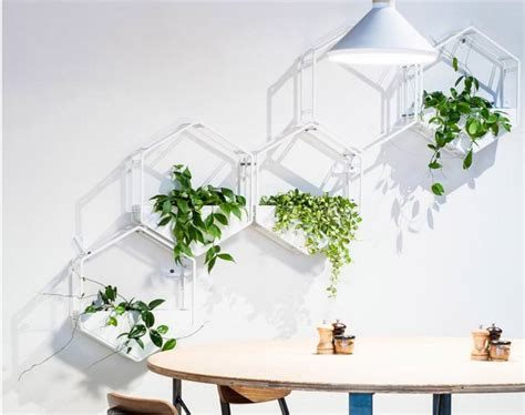 Designer Kitchen Appliances wabe wall planter is vertical garden solution for urban
