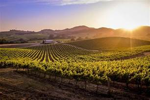 napa sonoma wine country lonely planet
