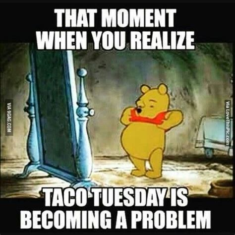 tuesday humor images  pinterest happy tuesday