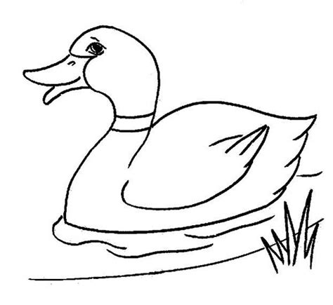 Coloring Page Duck by Duck Coloring Pages Forcoloringpages Nursery Room