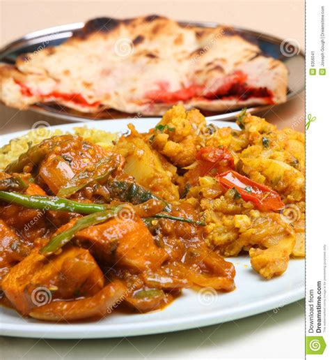 curry payment plan indian curry meal stock image image 6356041