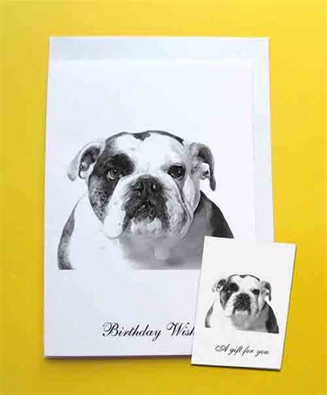 bulldog cards bulldog birthday card gift tag