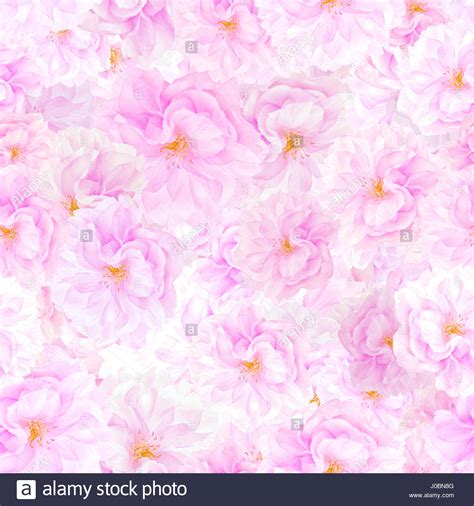 floral print background flower print background flowers ideas for review