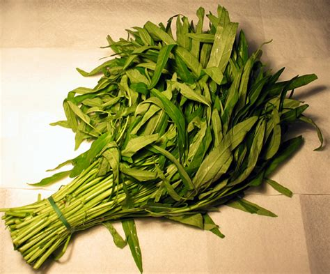 different type of leafy vegetable with name green leafy vegetables names list with pictures