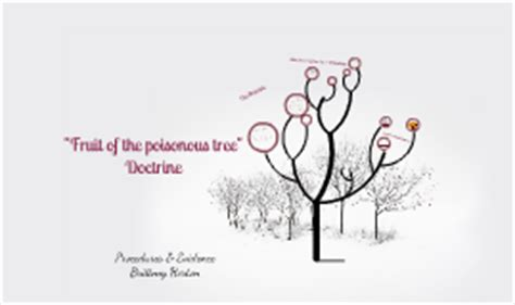 fruit of the poisonous tree fruit of the poisonous tree by horton on prezi