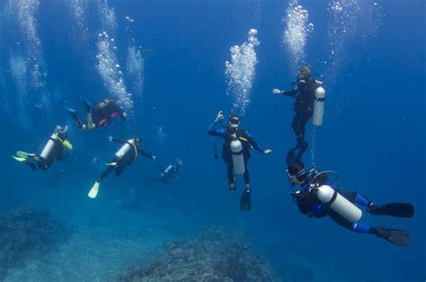 island images manta dive resort gili air