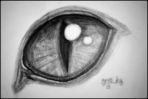 cat eye drawing cat eye drawing agnesu 169 2016 jul 29 2012