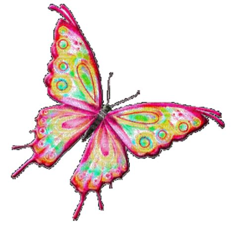 imagenes mariposa que se muevan gif papillon picmix
