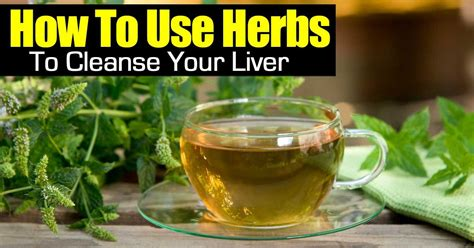 What To Take To Detox Your by How To Use Herbs To Cleanse Your Liver