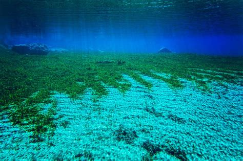 the clearest water in the world the clearest lake in the world is in new zealand