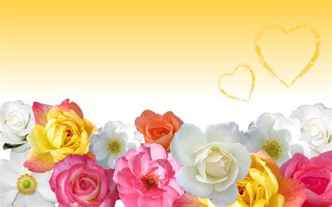wallpaper flower love flower love wallpaper in yellow