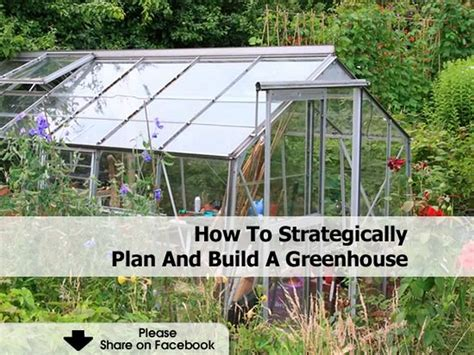 how to make a green house how to strategically plan and build a greenhouse