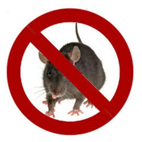 cara membuat virus sederhana jalan tikus teknologi pengusir tikus laboratorium komputer smp n 1