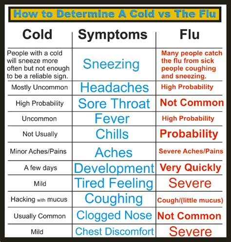 Mcdougall Diet Detox Flu Like Symptoms by Cold And Flu Influenza Symptoms Treatments Causes