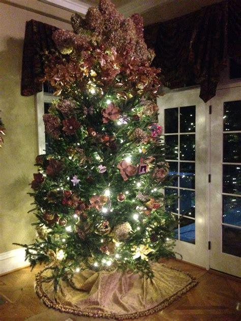 hydrangea christmas tree future home pinterest trees
