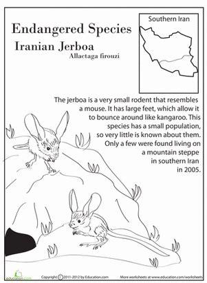 printable endangered animal fact sheets endangered species iranian jerboa comprehension