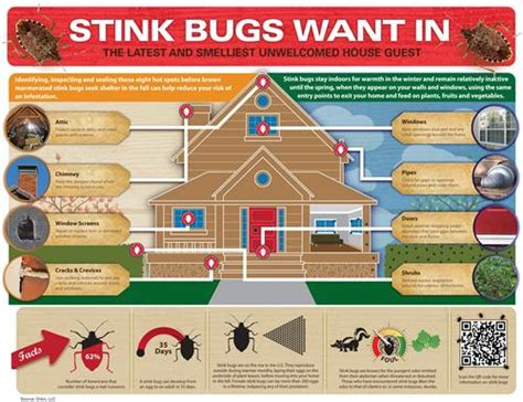 how to keep bugs out of your room media materials orkin