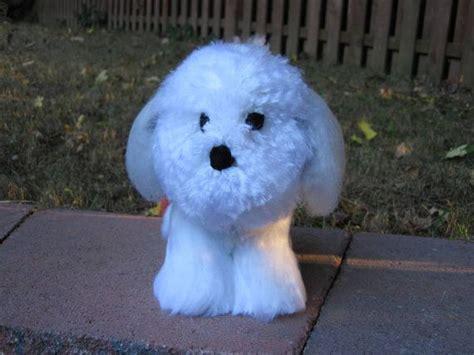 happy grove shih tzu 25 best ideas about shih tzu on shih tzu puppy shih tzu and baby