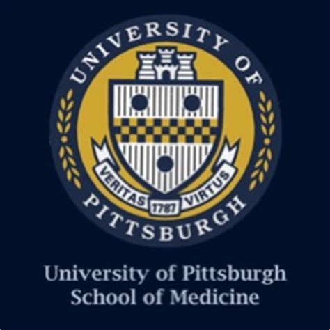 Of Pittsburgh Mba Program by Top Schools Pitt School Admissions Profile