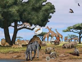 Tropical Grassland Plants List - african savanna national geographic society