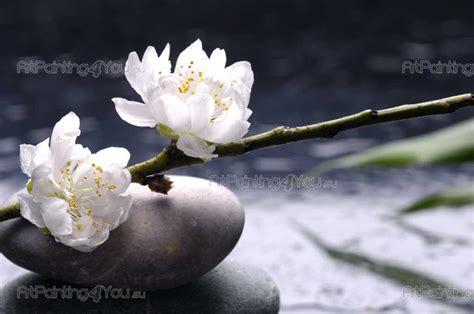 imagenes flores zen papier peint zen spa poster impression sur toile