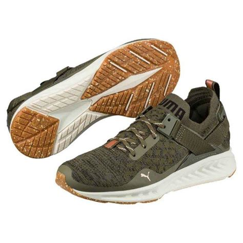 Ignite Evoknit Lo Pavement Original Only ignite evoknit lo vr buy and offers on runnerinn
