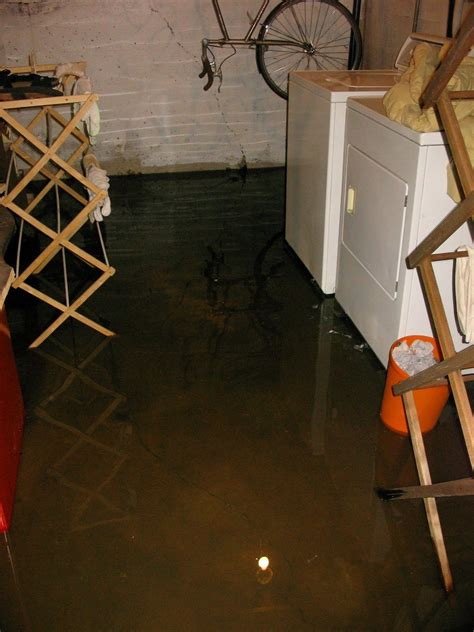 Water Seeping Through Basement Floor by Plush Design Water Seeping Through Basement Floor In