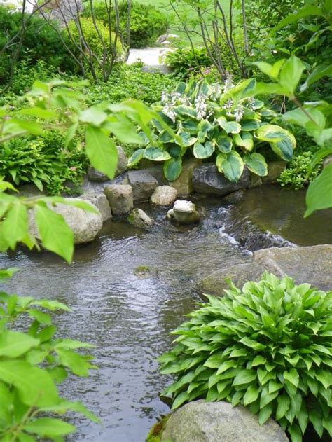 778 best images about backyard waterfalls and streams on