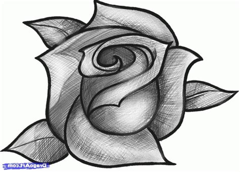 pencil drawings charcoal drawings and art galleries rose easy pencil shading drawings of rose drawing of sketch