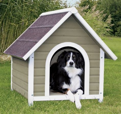 roof dog dog houses deals on 1001 blocks