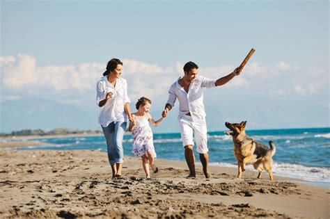 dog friendly beach house guide to pet friendly florida rentals vacationrentals com